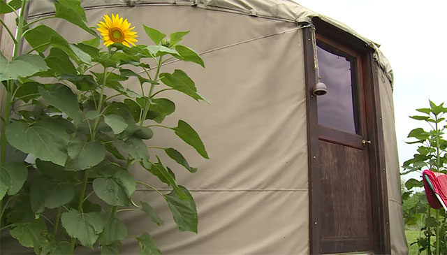 off-grid-yurt2