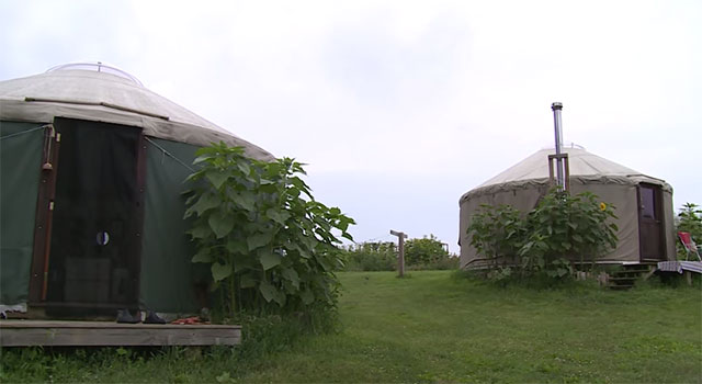 off-grid-yurt6