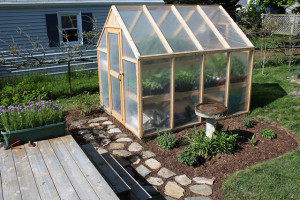diy-greenhouse1