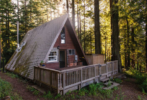 Tiny A-Frame Cabin in the Redwoods