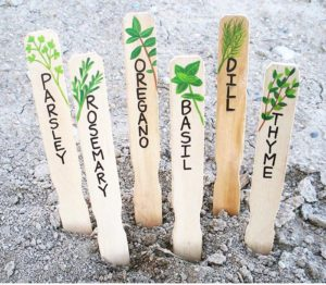15 Creative DIY Garden Plant Marker Ideas