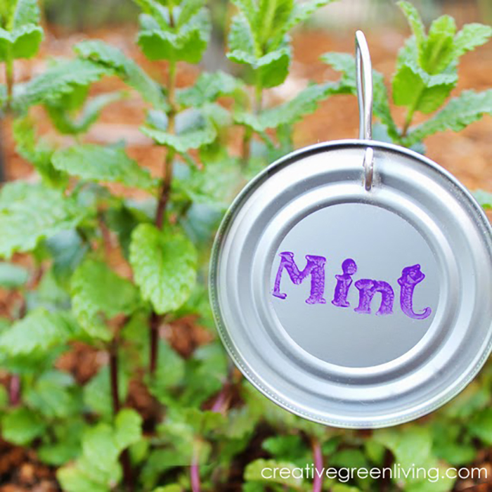 diy plant markers 5
