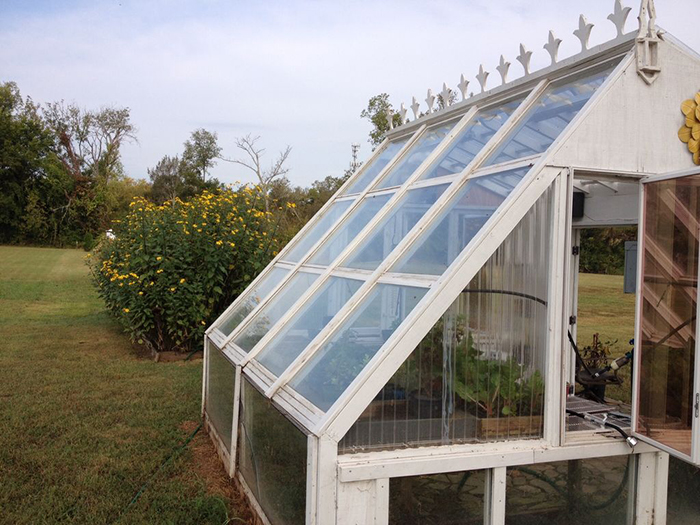 greenhouse from old windows 9